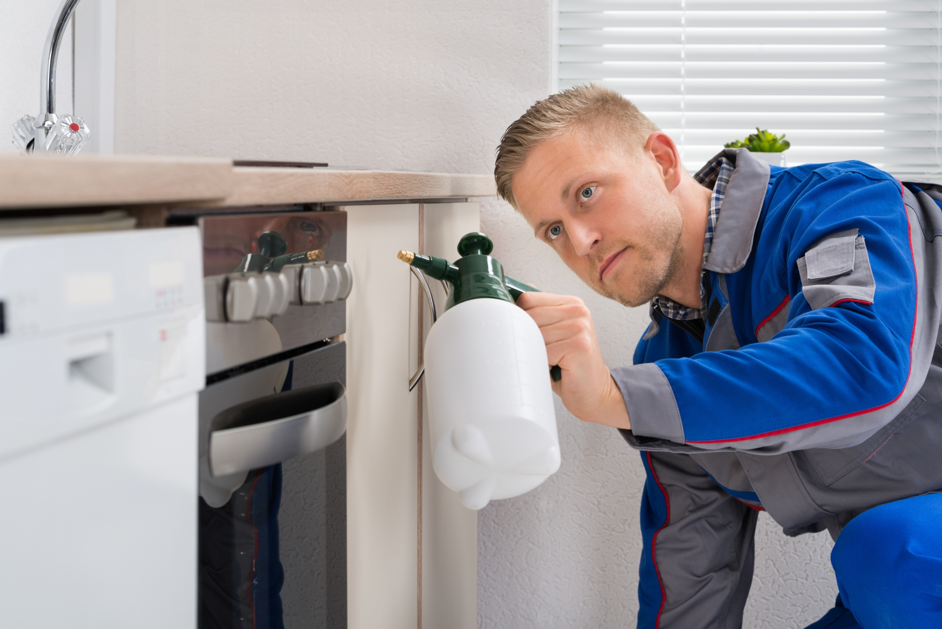 Pest Inspection, Pest Control in Manor Park, E12. Call Now 020 8166 9746