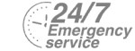 24/7 Emergency Service Pest Control in Manor Park, E12. Call Now! 020 8166 9746