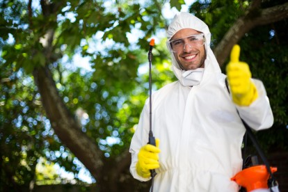 Bug Control, Pest Control in Manor Park, E12. Call Now 020 8166 9746
