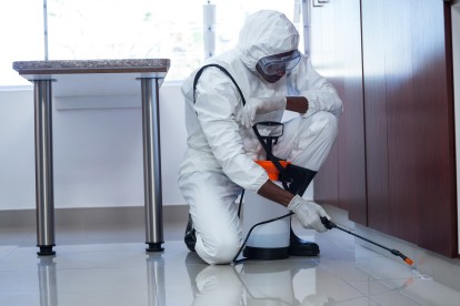 Emergency Pest Control, Pest Control in Manor Park, E12. Call Now 020 8166 9746